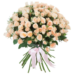 Розы Кустовые кремовые
